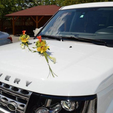 výzdoba svadobného auta